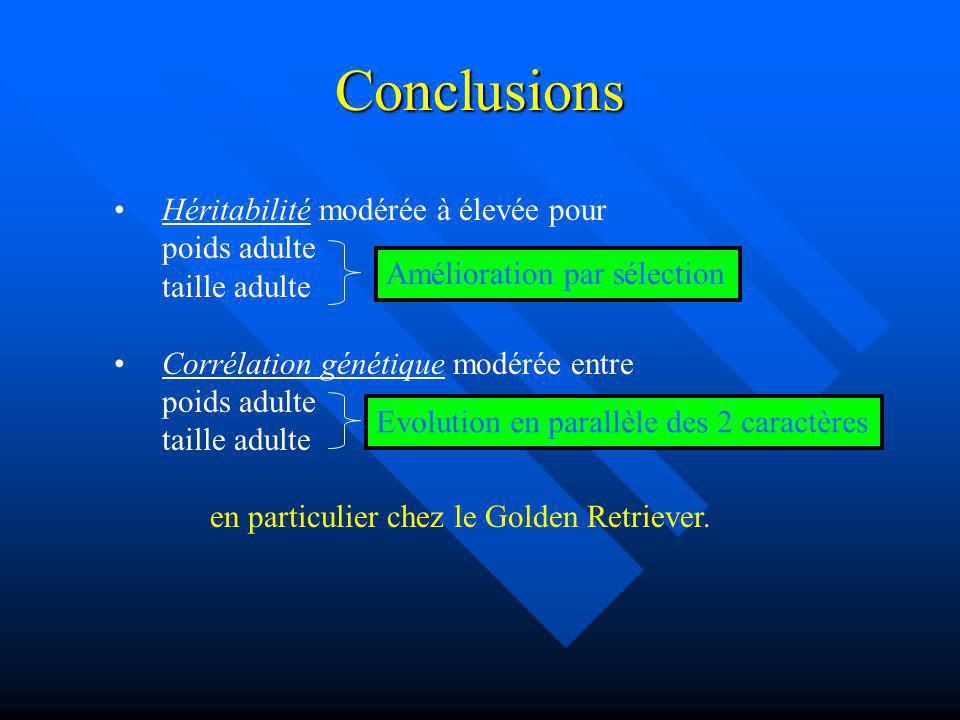 Conclusions Héritabilité modérée à élevée pour poids adulte