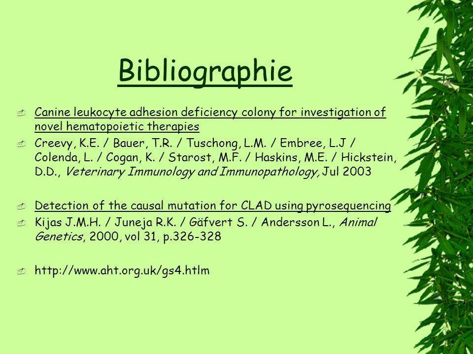 Bibliographie Canine leukocyte adhesion deficiency colony for investigation of novel hematopoietic therapies.