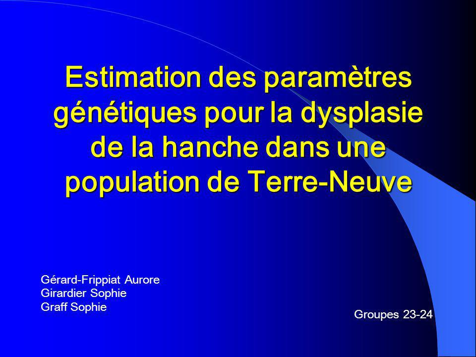 Estimation des paramètres génétiques pour la dysplasie de la hanche dans une population de Terre-Neuve