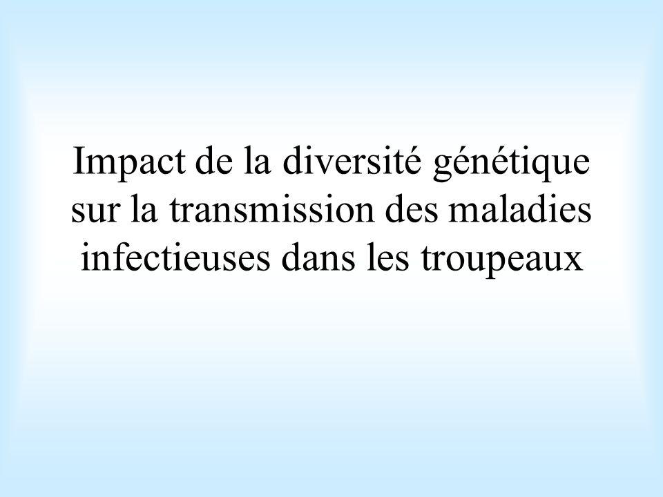 Impact de la diversité génétique sur la transmission des maladies infectieuses dans les troupeaux