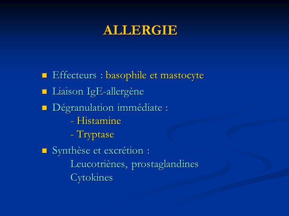 ALLERGIE Effecteurs : basophile et mastocyte Liaison IgE-allergène
