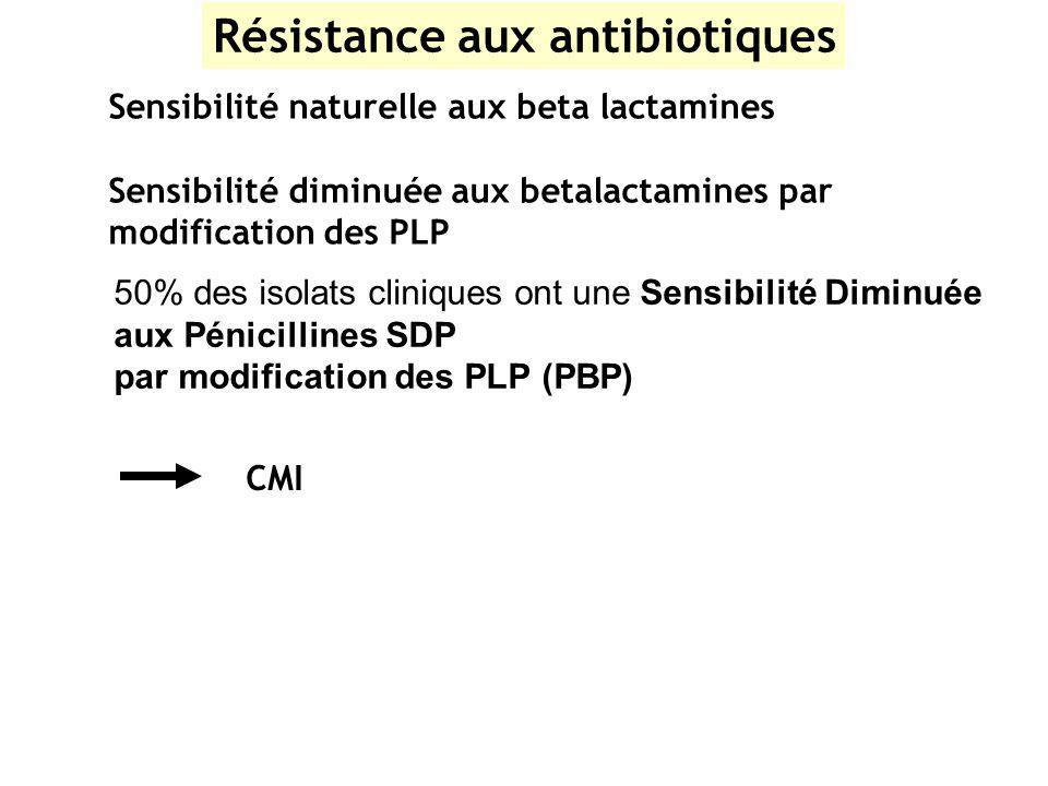 Résistance aux antibiotiques