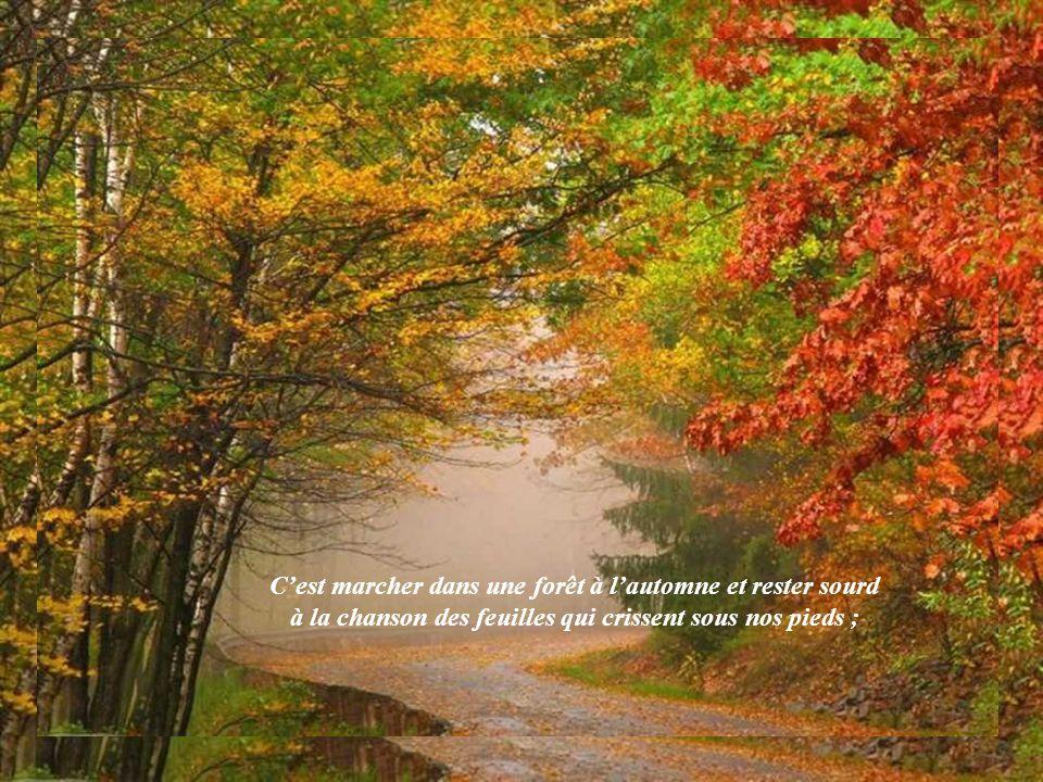 C'est marcher dans une forêt à l'automne et rester sourd à la chanson des feuilles qui crissent sous nos pieds ;