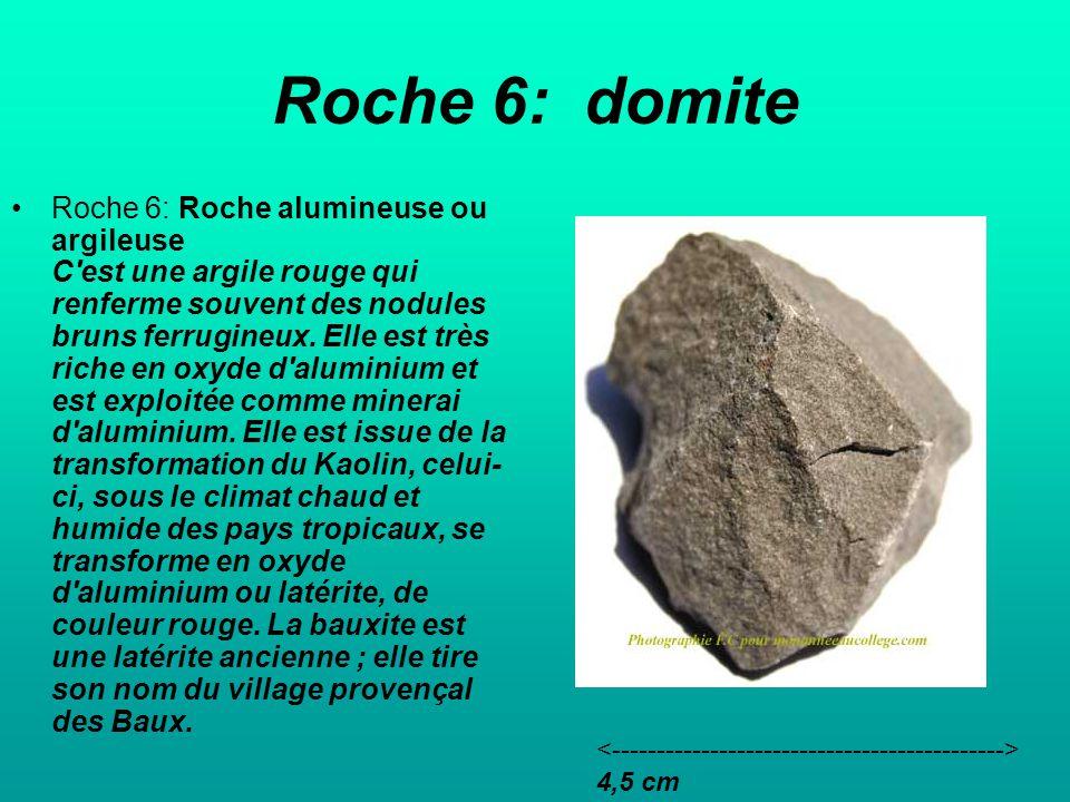 Roche 6: domite