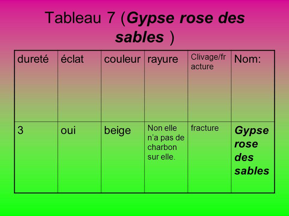 Tableau 7 (Gypse rose des sables )