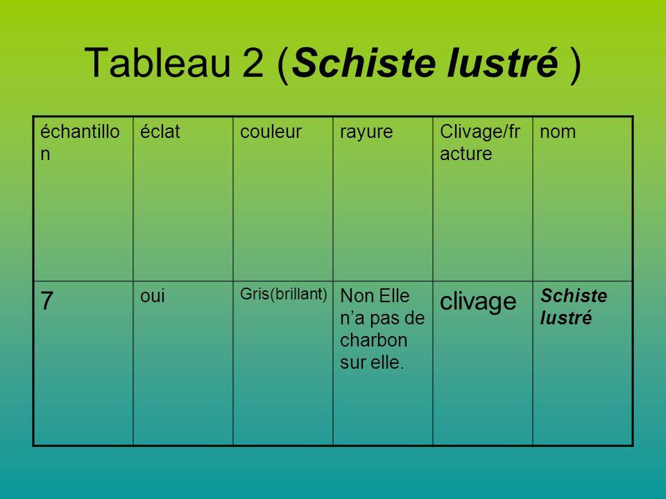 Tableau 2 (Schiste lustré )