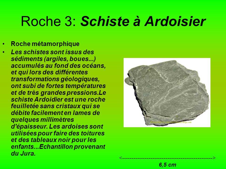 Roche 3: Schiste à Ardoisier