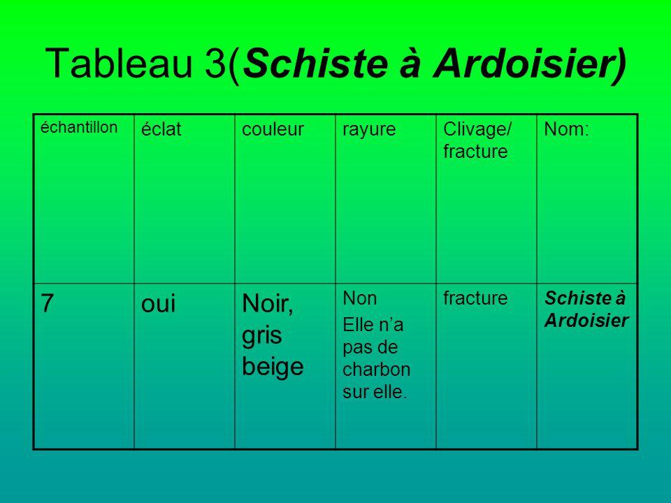 Tableau 3(Schiste à Ardoisier)