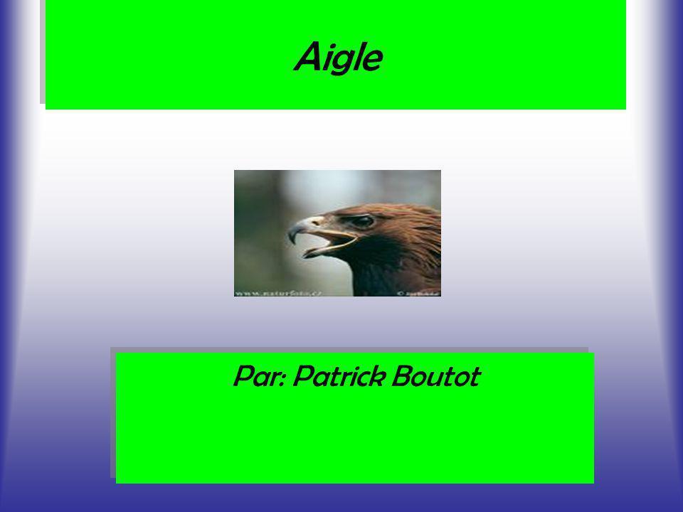 Aigle Par: Patrick Boutot