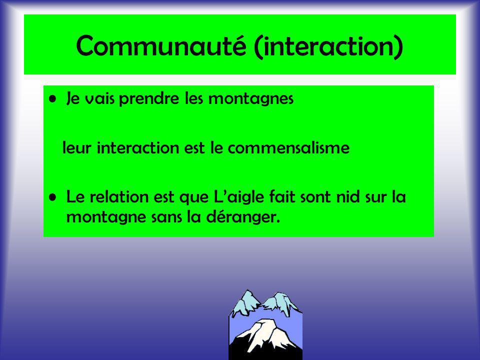 Communauté (interaction)
