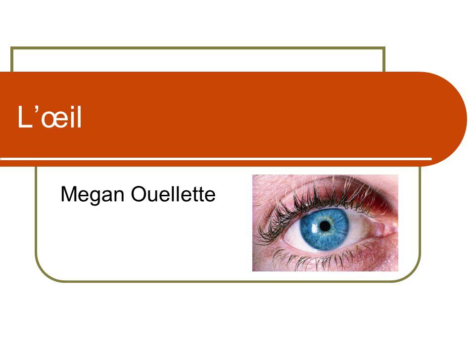L'œil Megan Ouellette