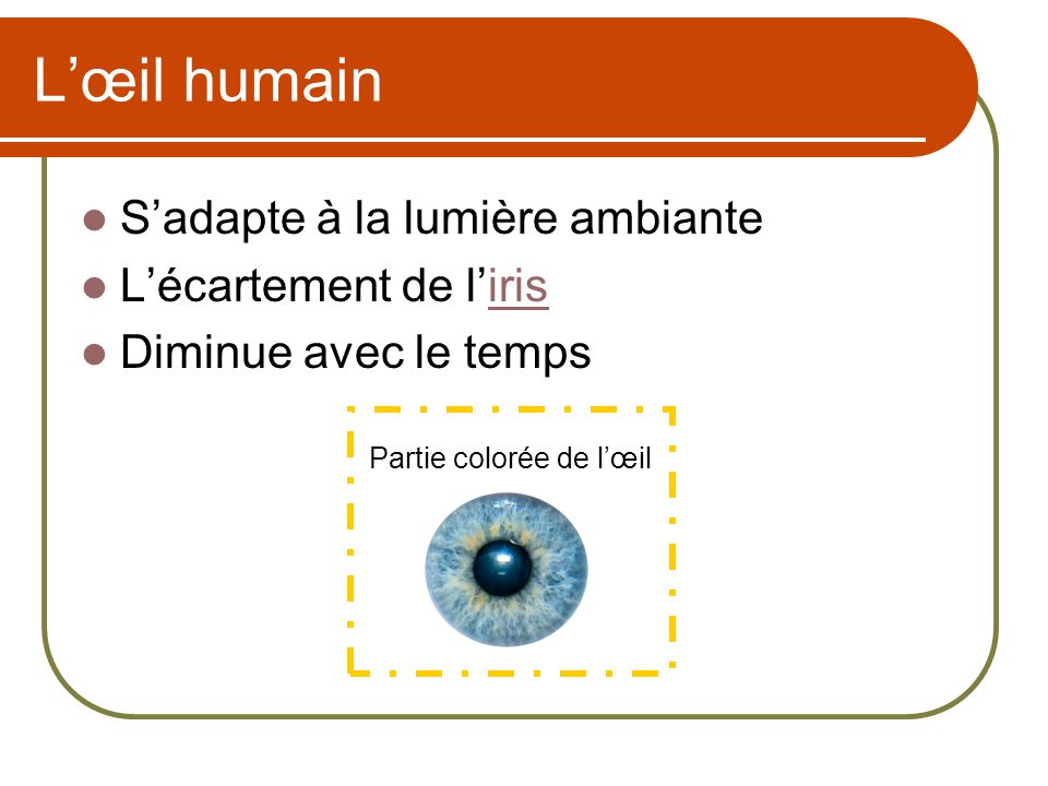 L'œil humain S'adapte à la lumière ambiante L'écartement de l'iris