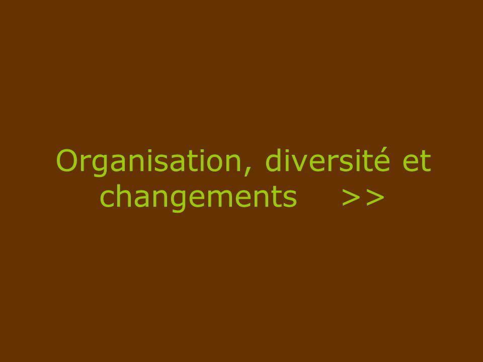 Organisation, diversité et changements >>