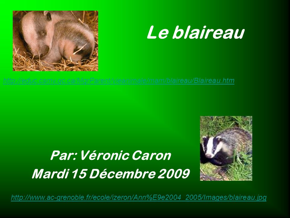Par: Véronic Caron Mardi 15 Décembre 2009