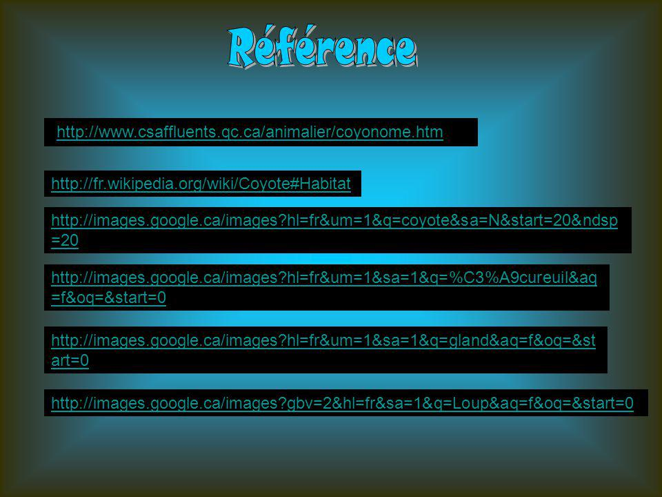 Référence http://www.csaffluents.qc.ca/animalier/coyonome.htm