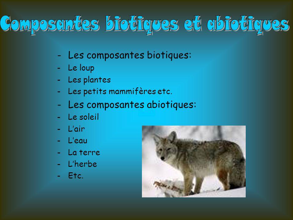 Composantes biotiques et abiotiques