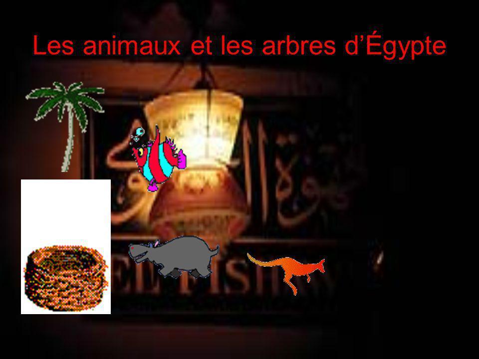Les animaux et les arbres d'Égypte