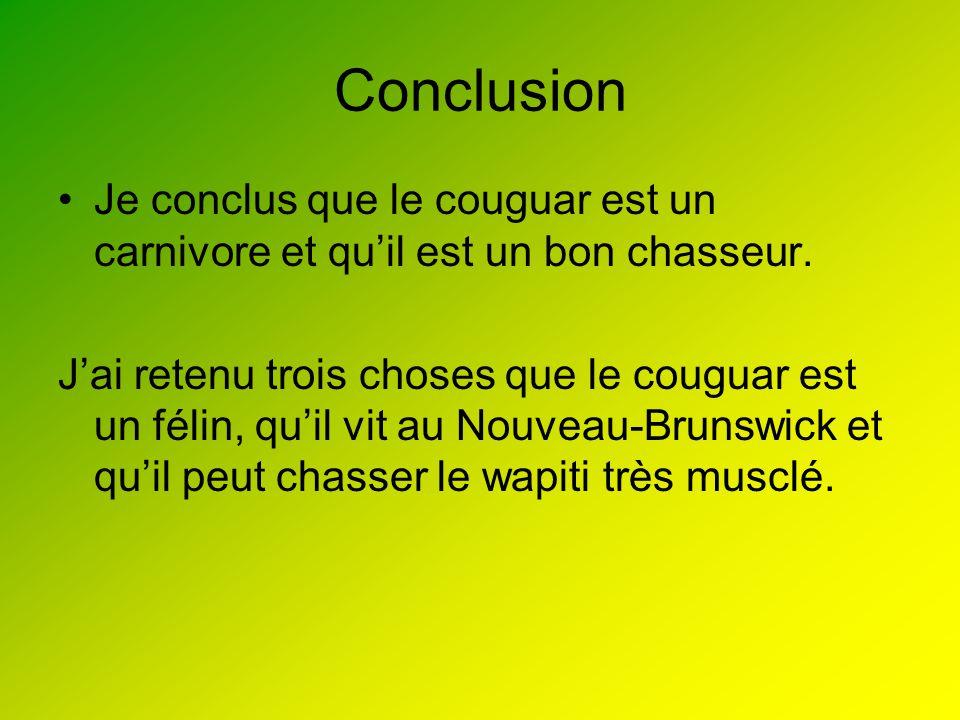 Conclusion Je conclus que le couguar est un carnivore et qu'il est un bon chasseur.