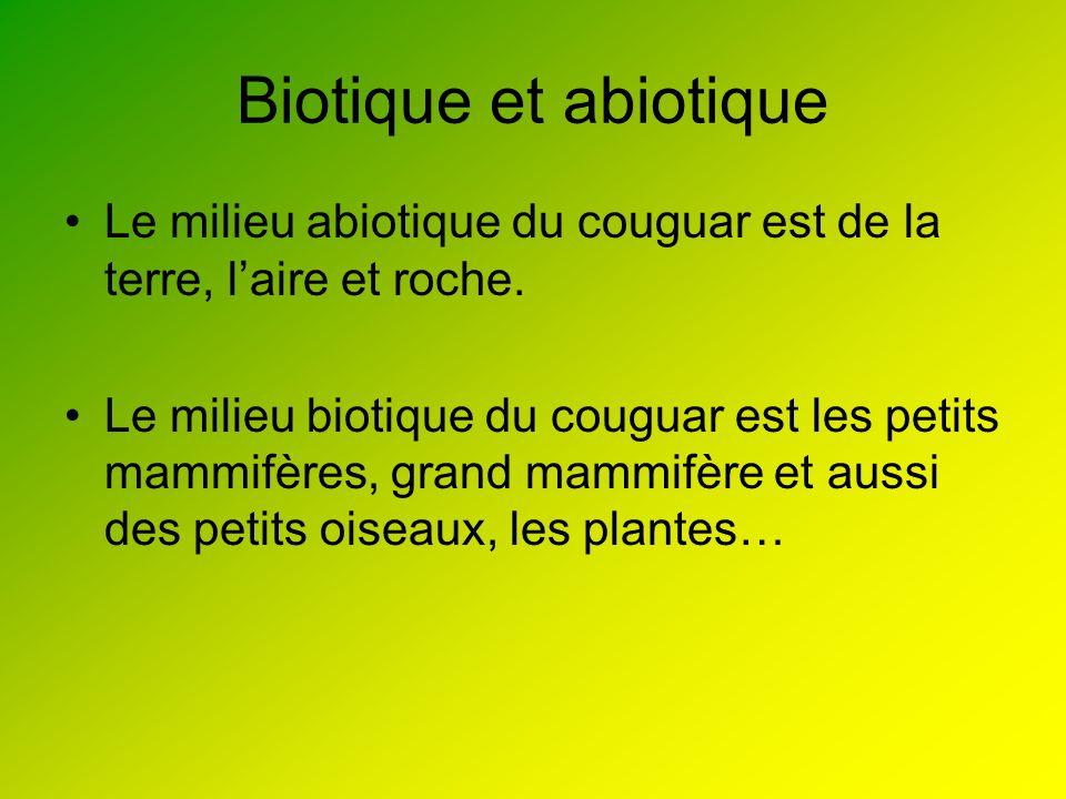 Biotique et abiotique Le milieu abiotique du couguar est de la terre, l'aire et roche.
