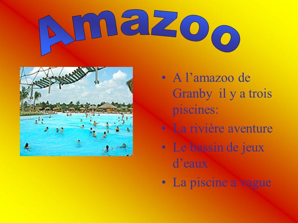 Amazoo A l'amazoo de Granby il y a trois piscines: La rivière aventure