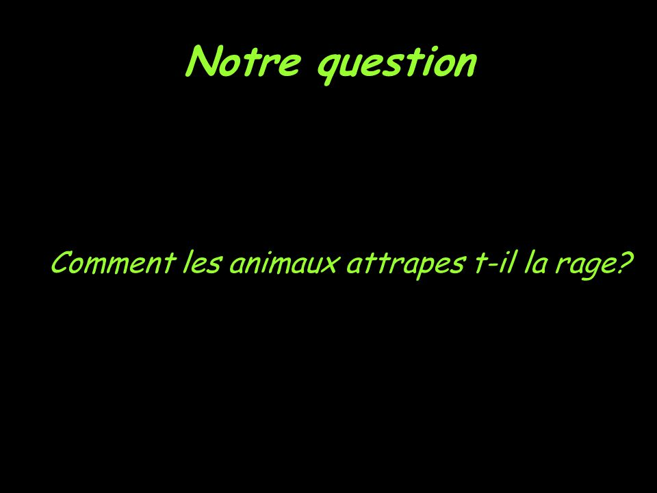 Notre question Comment les animaux attrapes t-il la rage