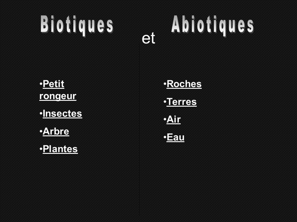 et Biotiques Abiotiques Petit rongeur Insectes Arbre Plantes Roches