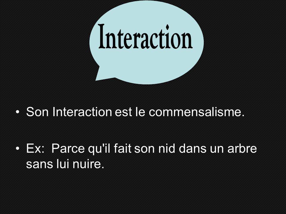 Son Interaction est le commensalisme.