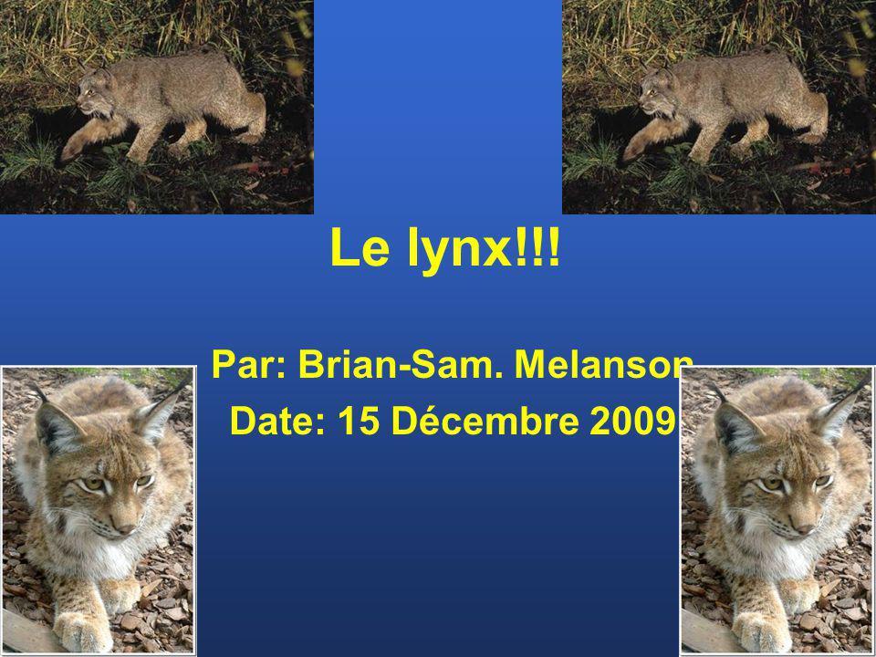 Par: Brian-Sam. Melanson Date: 15 Décembre 2009