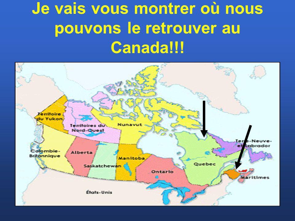 Je vais vous montrer où nous pouvons le retrouver au Canada!!!