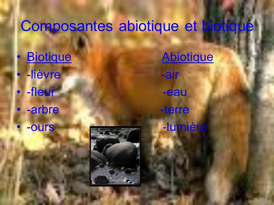 Composantes abiotique et biotique