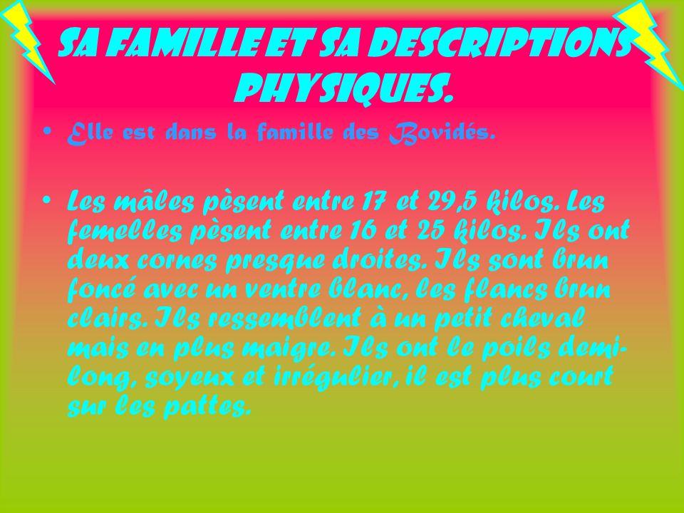 Sa famille et sa descriptions physiques.