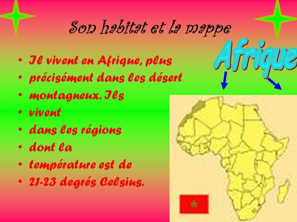 Son habitat et la mappe Afrique Il vivent en Afrique, plus