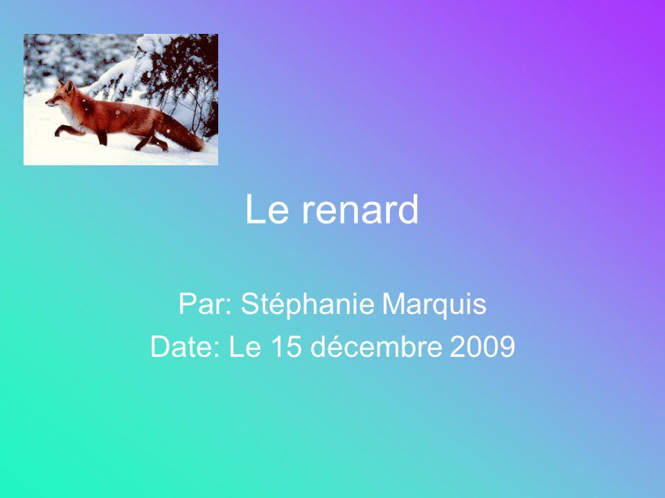 Par: Stéphanie Marquis Date: Le 15 décembre 2009