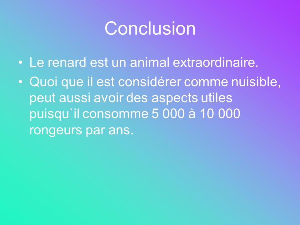Conclusion Le renard est un animal extraordinaire.