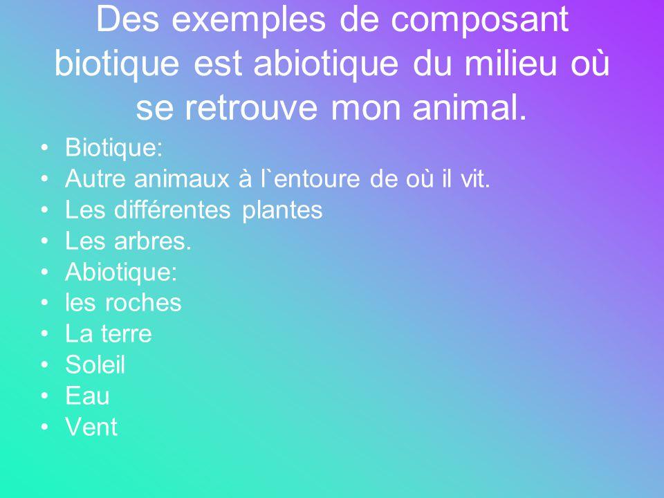 Des exemples de composant biotique est abiotique du milieu où se retrouve mon animal.