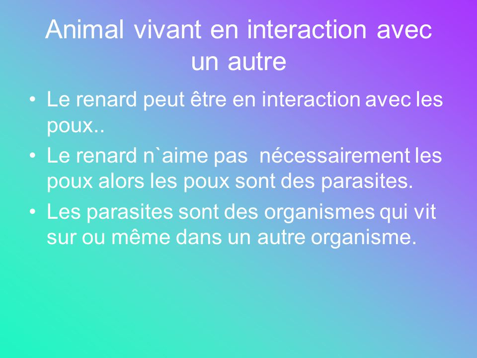 Animal vivant en interaction avec un autre