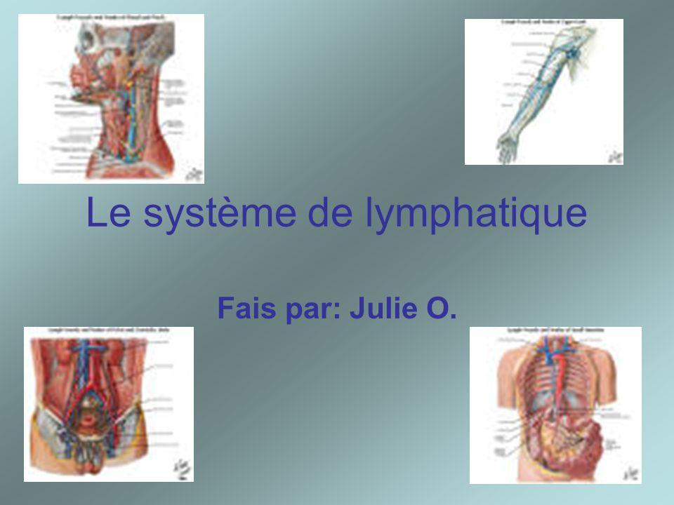 Le système de lymphatique