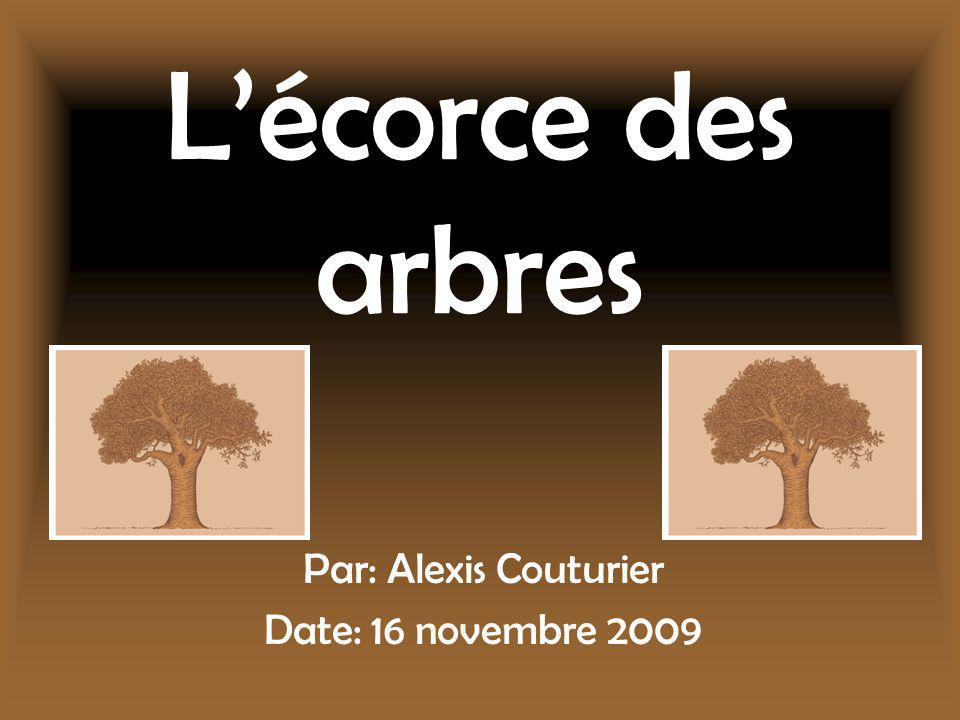 Par: Alexis Couturier Date: 16 novembre 2009