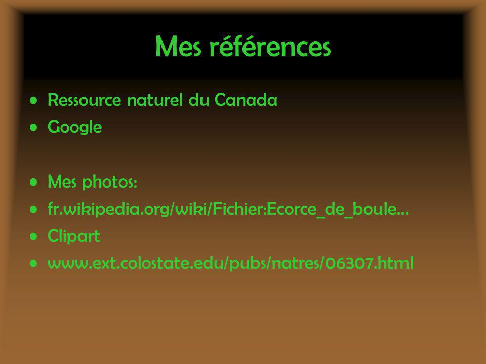 Mes références Ressource naturel du Canada Google Mes photos: