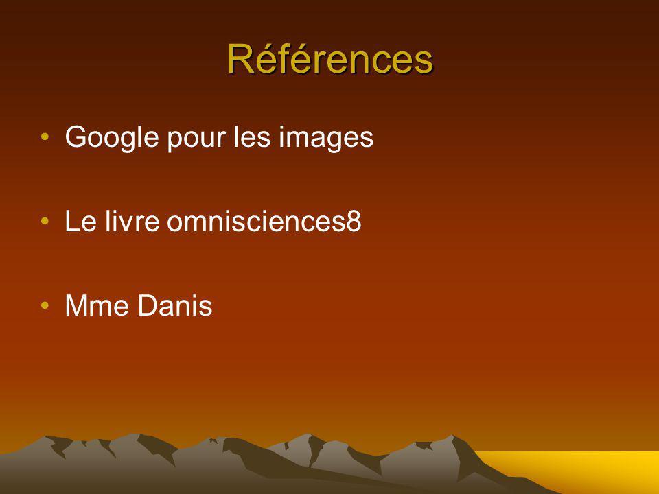 Références Google pour les images Le livre omnisciences8 Mme Danis