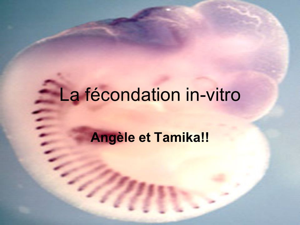 La fécondation in-vitro