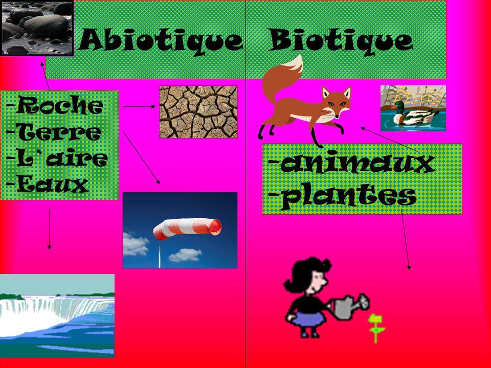 Abiotique Biotique Roche Terre L`aire Eaux -animaux -plantes