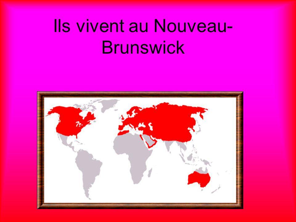 Ils vivent au Nouveau-Brunswick
