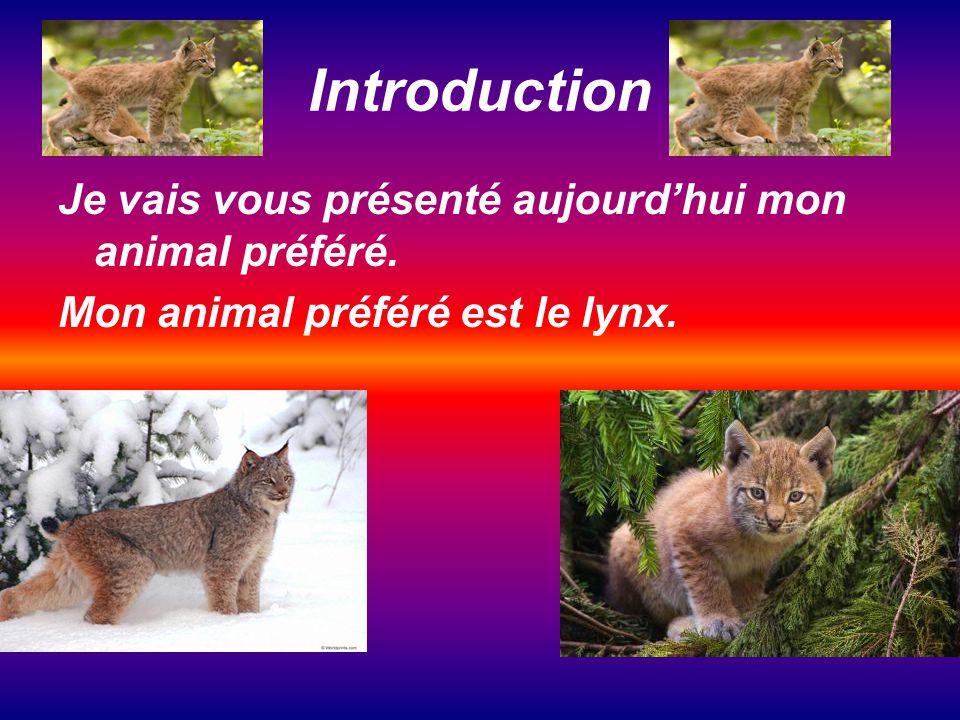 Introduction Je vais vous présenté aujourd'hui mon animal préféré.