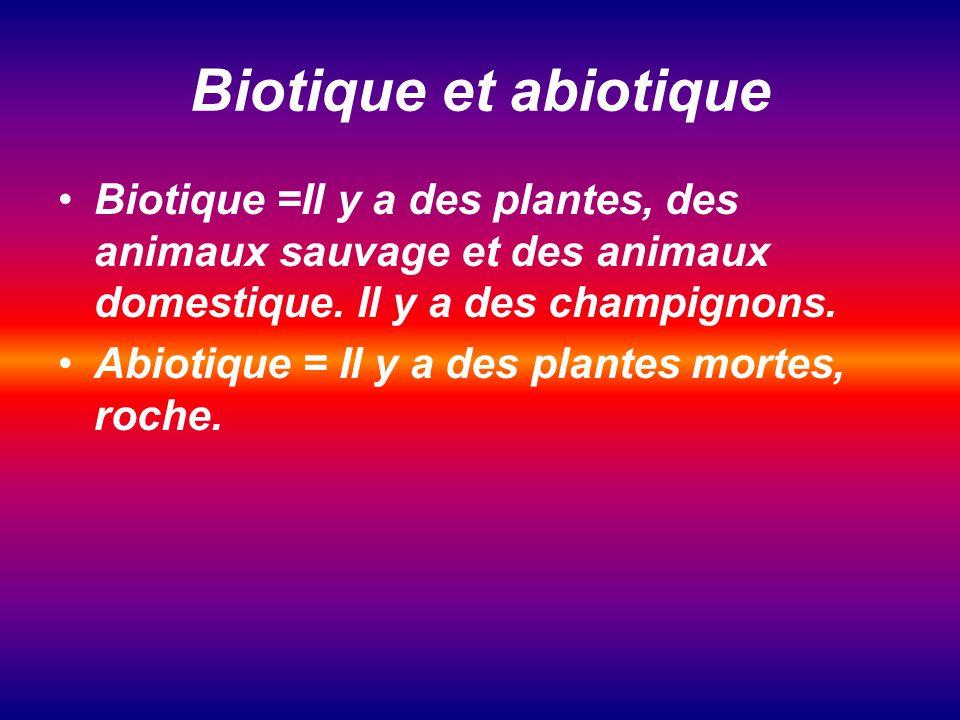 Biotique et abiotique Biotique =Il y a des plantes, des animaux sauvage et des animaux domestique. Il y a des champignons.