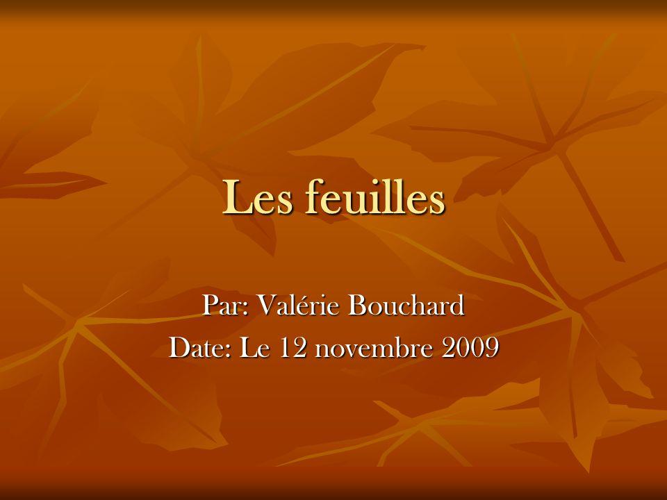 Par: Valérie Bouchard Date: Le 12 novembre 2009