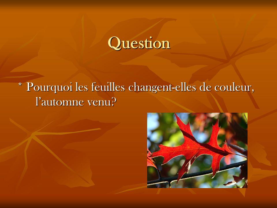 Question * Pourquoi les feuilles changent-elles de couleur, l'automne venu