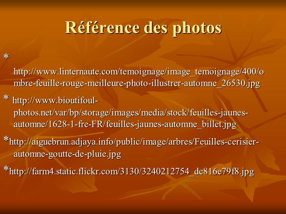 Référence des photos * http://www.linternaute.com/temoignage/image_temoignage/400/ombre-feuille-rouge-meilleure-photo-illustrer-automne_26530.jpg.