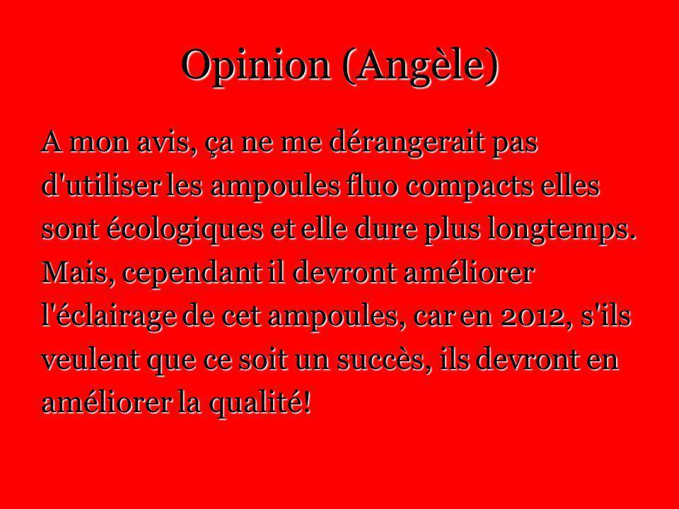 Opinion (Angèle) A mon avis, ça ne me dérangerait pas