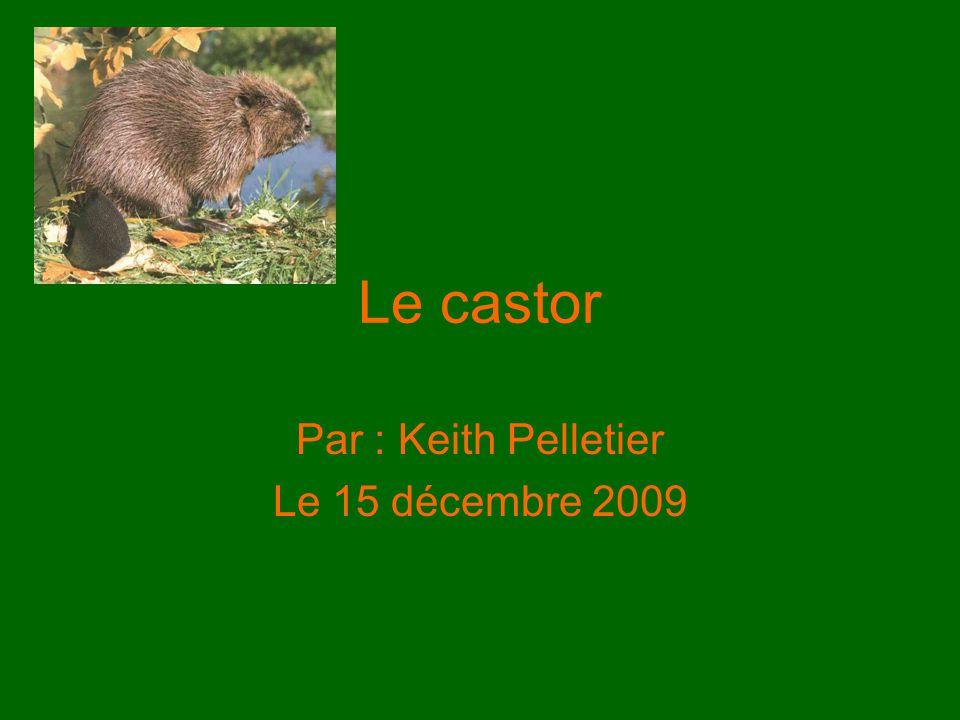 Par : Keith Pelletier Le 15 décembre 2009